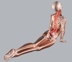 tomin visszér visszér kezelése osteopathia véleményekkel